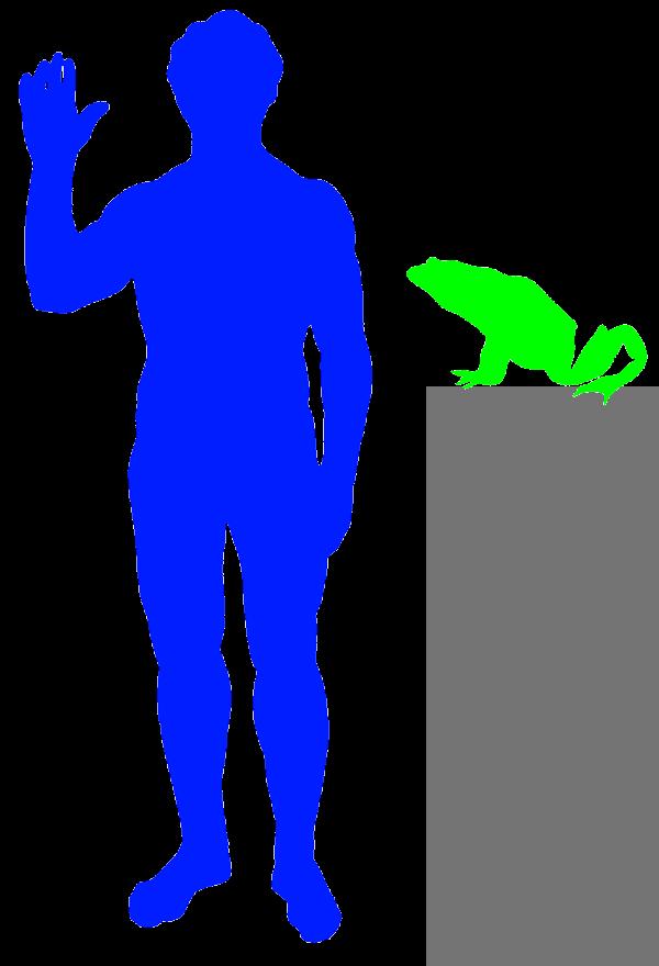 The American Bullfrog FAQ  centralptcom